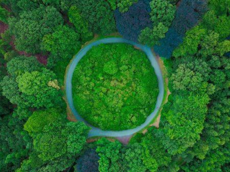 Döngüsel Ekonomi ve Sürdürülebilirlik